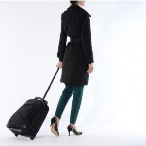 style-sac-delsey